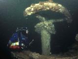 Equivalent diving qualifications