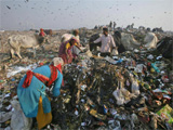 India just banned all forms of disposable plastic in its capital