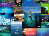 The best scuba diving books reviewed