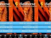 Seahorse app