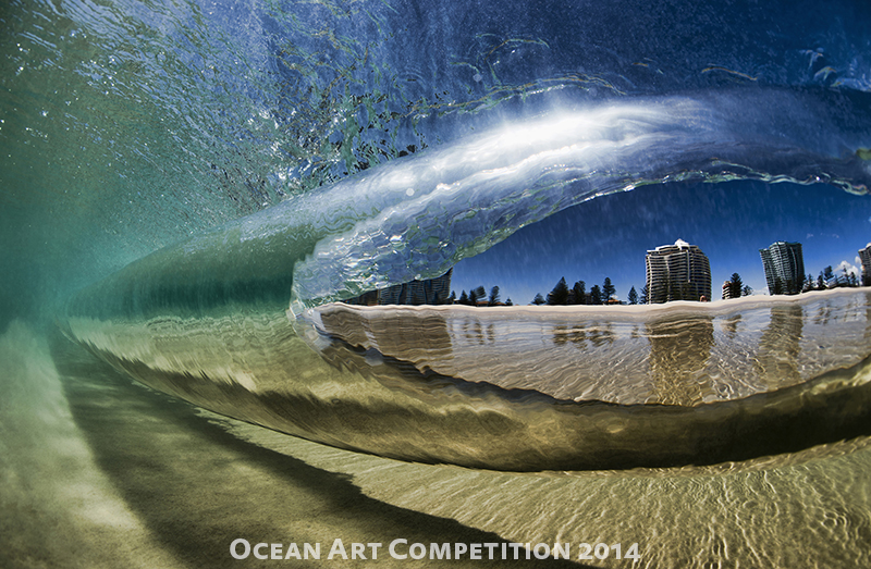 See The Winning Underwater Photos Of The Ocean Art Contest