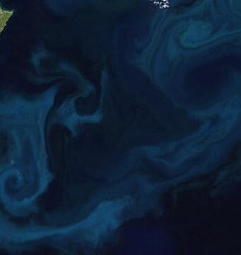 With the right mix of nutrients, phytoplankton grow quickly, creating blooms visible from space. This image, created from MODIS data, shows a phytoplankton bloom off New Zealand.