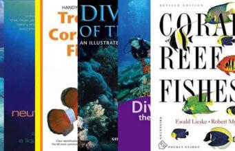 Best selling scuba books 2016