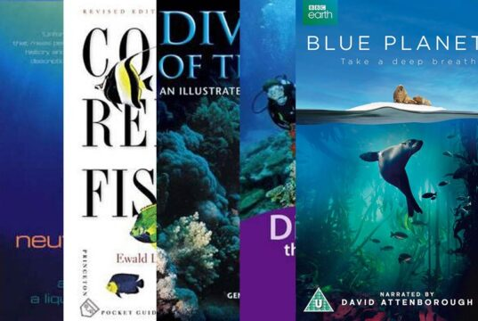 Scuba diving bestsellers 2017