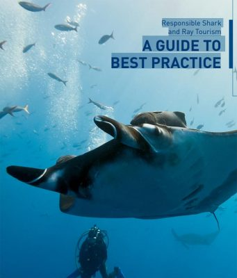 Guide to Responsible Shark and Ray Tourism