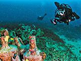 Diver amphora