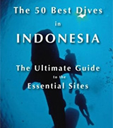 50 Best Dives in Indonesia