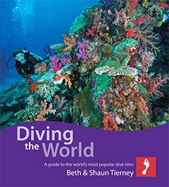 Diving the World