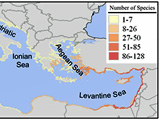 Map of invasive species in the Med