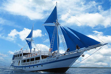 Pearl of Papua liveaboard