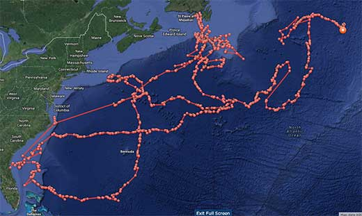 Map of Great White Shark Lydia's path from the Bahamas, via Canada, to the middle of the Atlantic