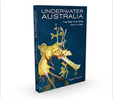 Underwater Australia: The Best Dive Sites Down Under