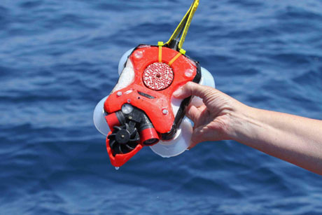 The whale research device contains a first-generation side-to-side facing dual camera and 3-D movement tag. (Image credit: Jeremy Goldbogen)