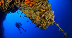 Diver taking part in Malta underwater survey
