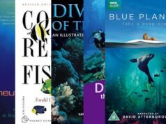 Scuba diving bestsellers 2017