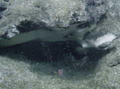 Undersea Methane bubbles